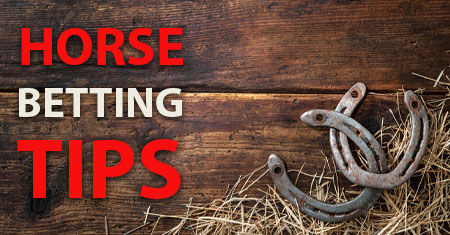 Horse-Betting-Tips-Canada Bookmakers
